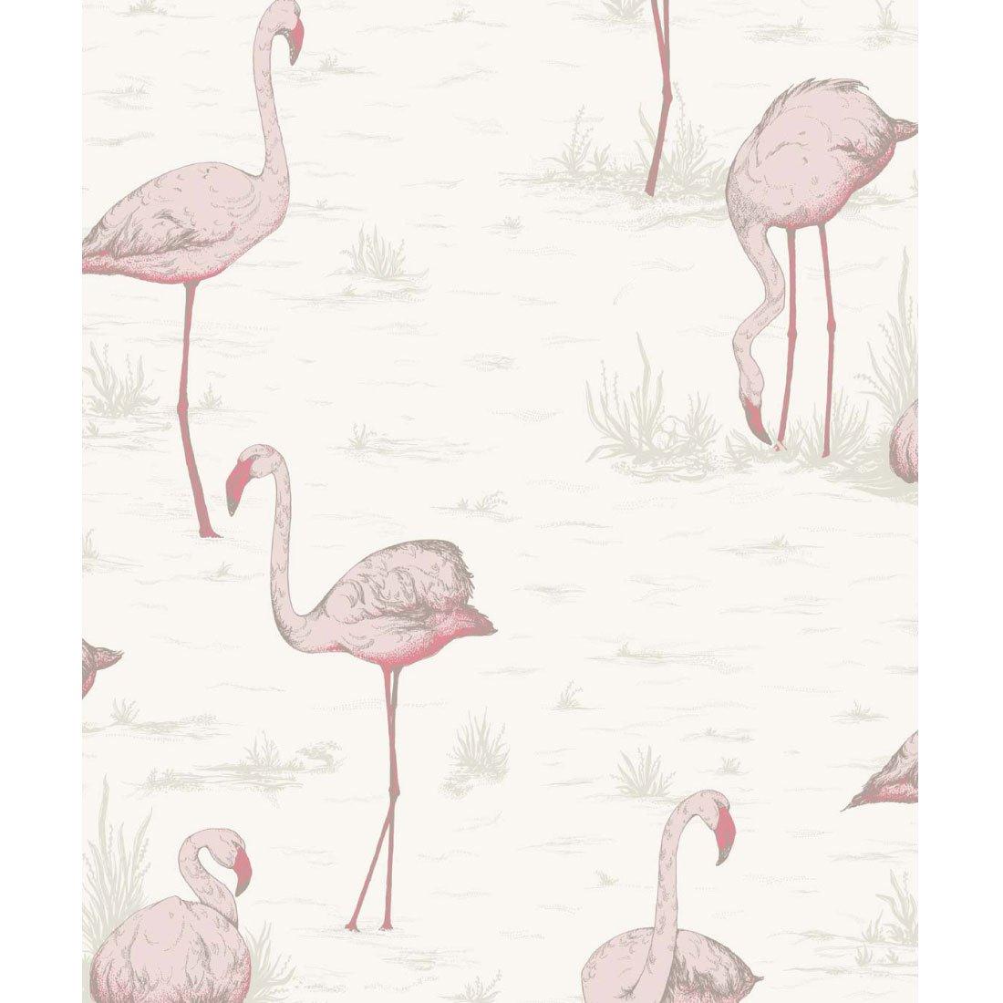 Cole & Son Flamingos Behang 958045