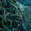 Mater Ocean Tafel