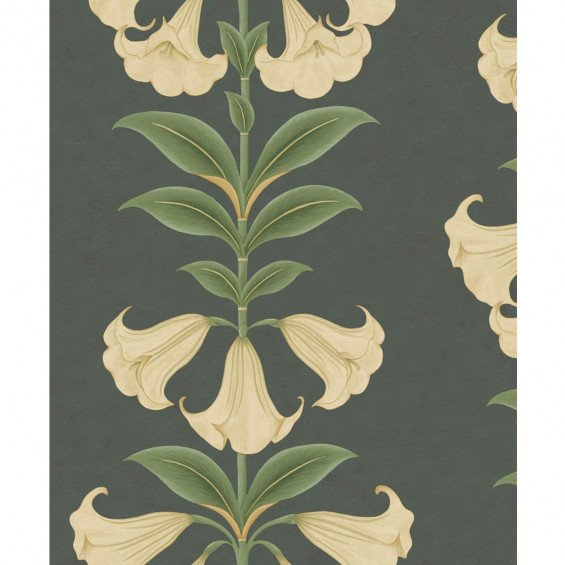Cole & Son Angel's Trumpet Behang