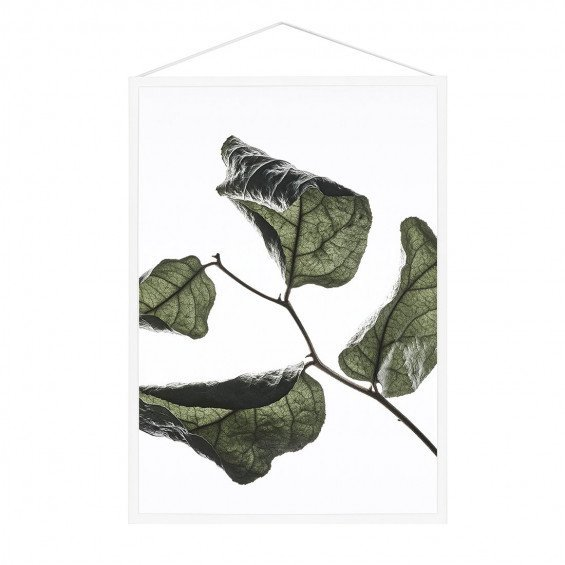 MOEBE Floating Leaves Poster A4