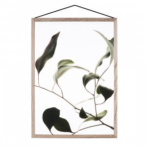 Floating Leaves Poster A2 (op=op)