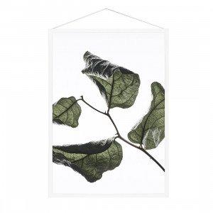 Floating Leaves Poster A4 (op=op)