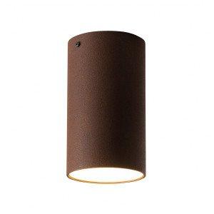 Graypants Roest Plafondlamp