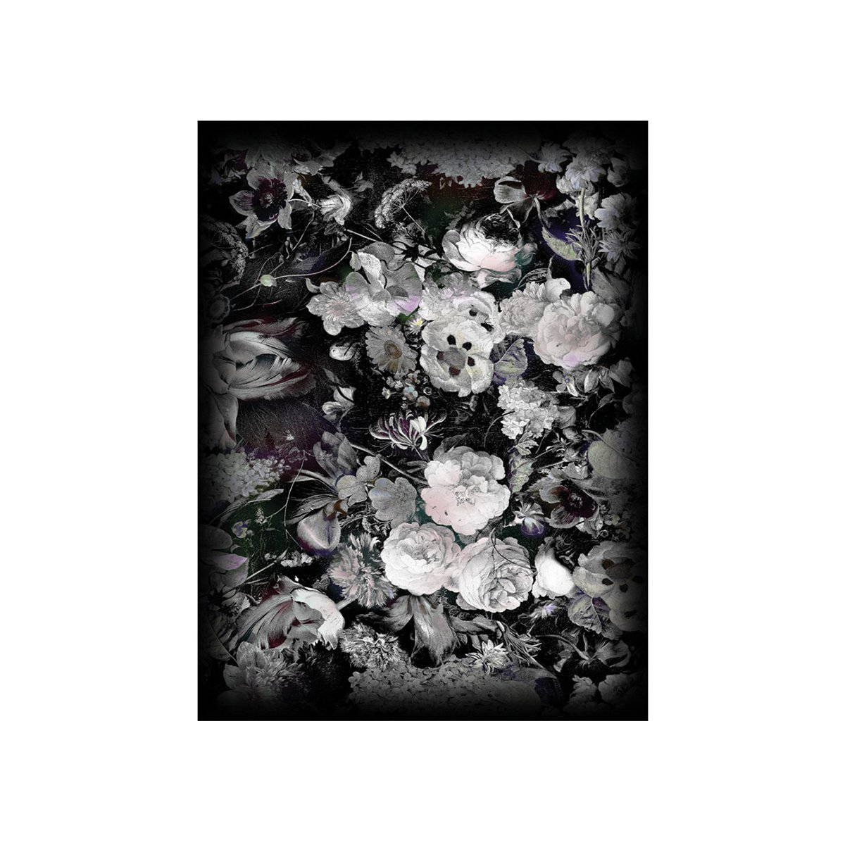 Moooi Carpets Eden Queen B&W Vloerkleed - 200x300 cm. - Low Pile