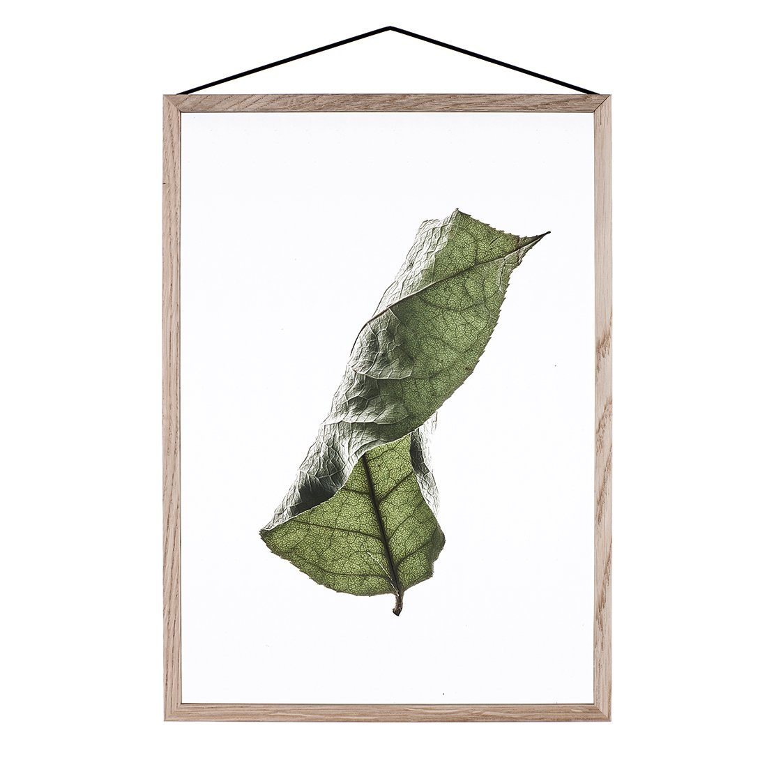 MOEBE Floating Leaves Poster A2 NO.4