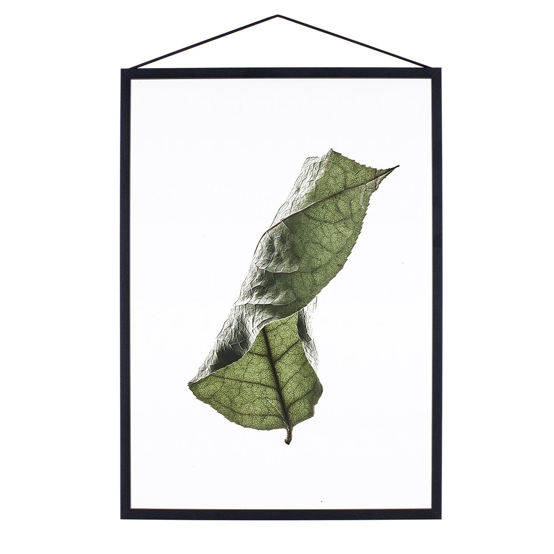 MOEBE Floating Leaves Poster A3 NO.4