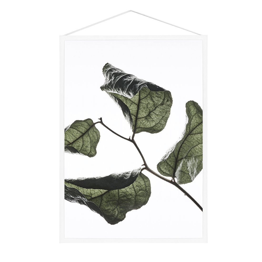 MOEBE Floating Leaves Poster A4 NO.3