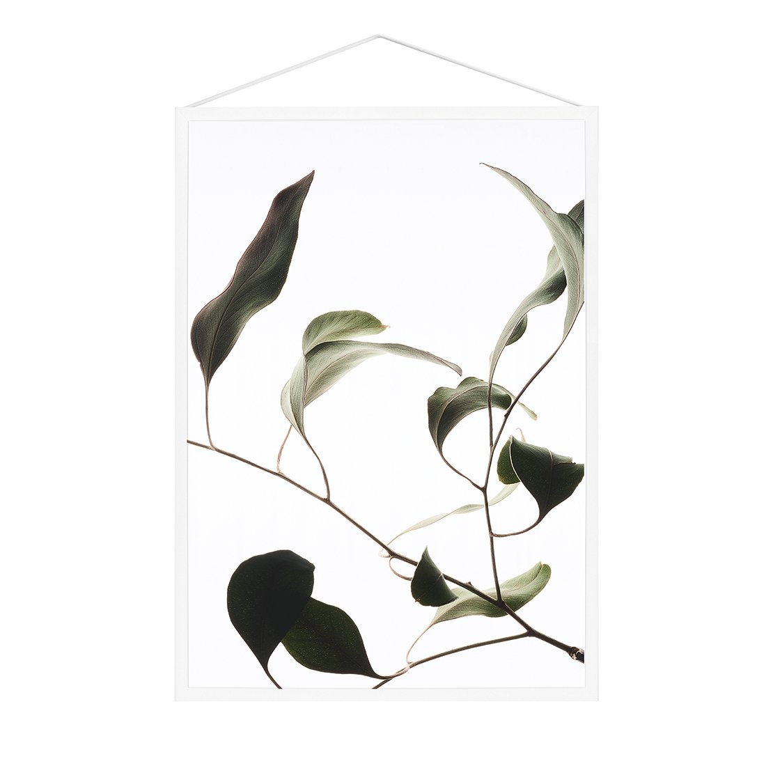 MOEBE Floating Leaves Poster A4 NO.9