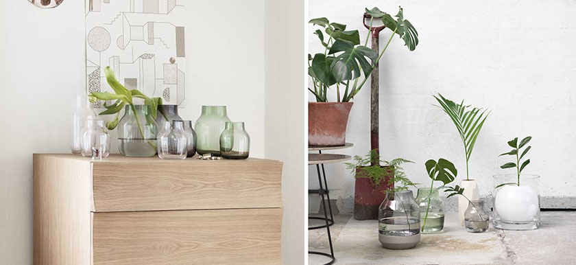 MisterDesign, Gastblog, Design interieur, Trend: Botanish