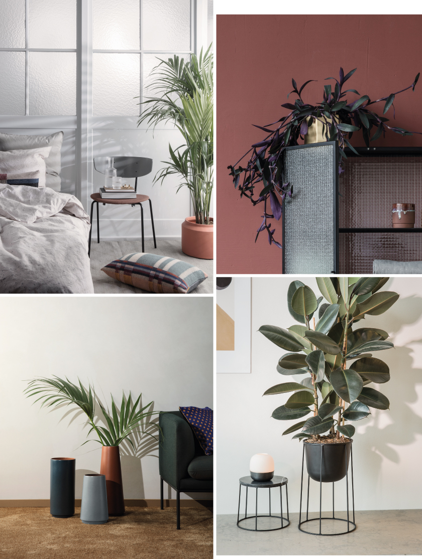 Interieurtrend 2017: Planten